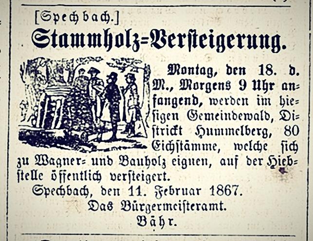 18670207