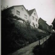 210b-Bergstraße-19-3-Sträller